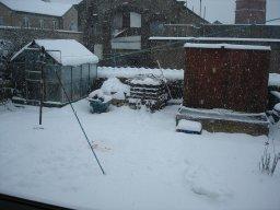 white christmas garden